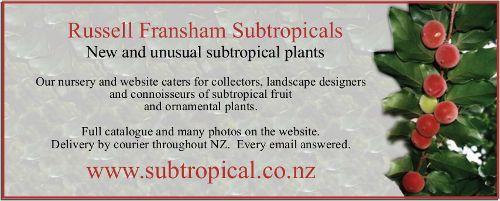 ad, Russell Fransham Subtropicals