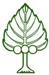 NZTCA official logo